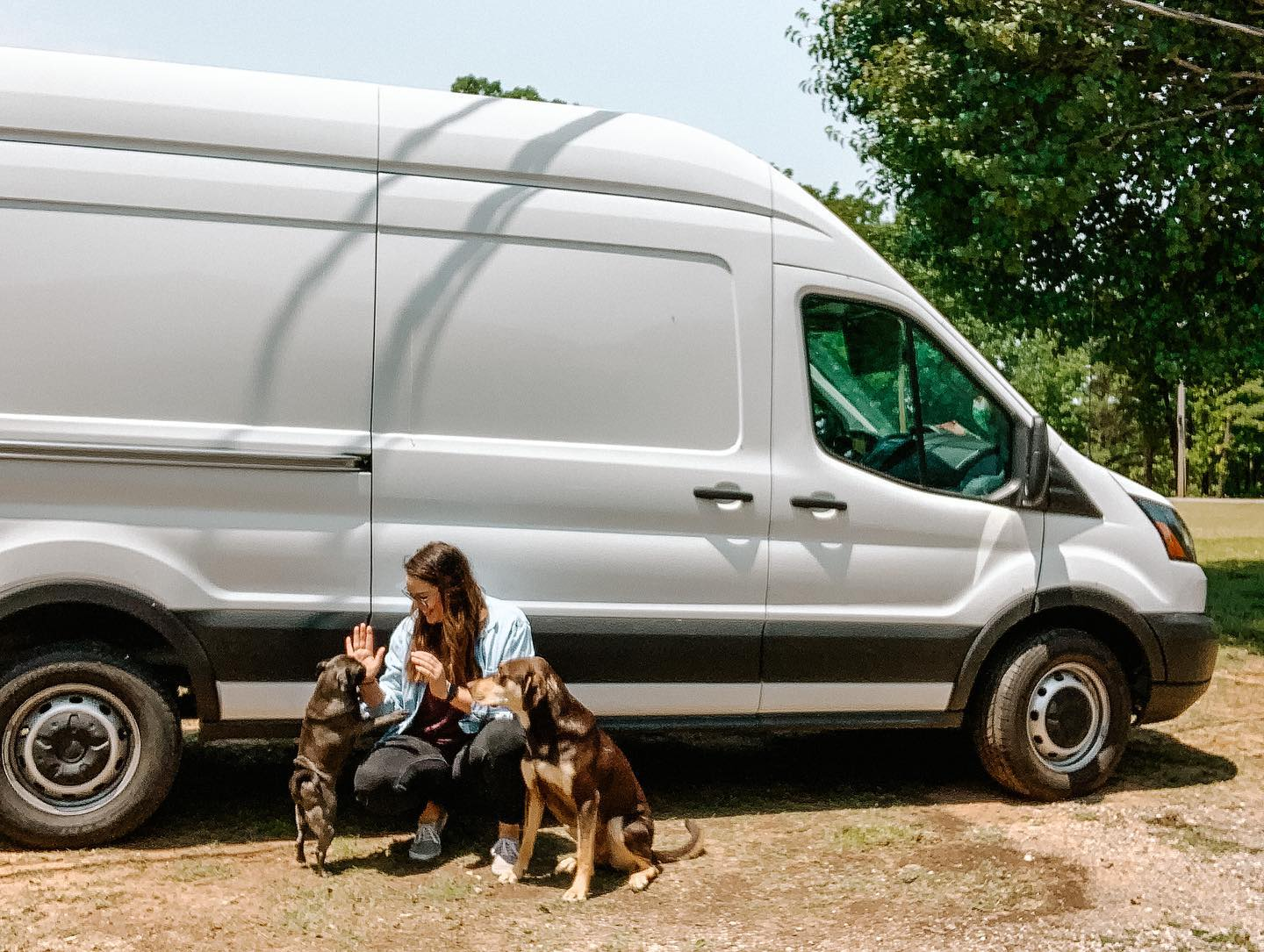 Girl crouched in front of a white Ford Transit van with a silver pug on one side and a tan/brown dog on the other side.